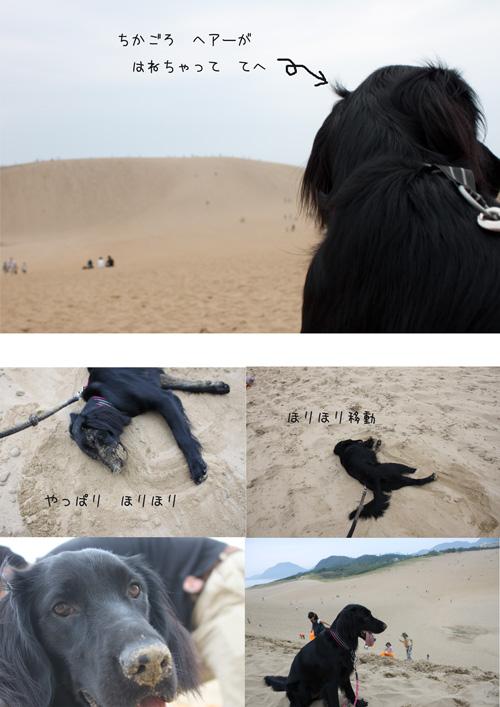 砂丘とLuty