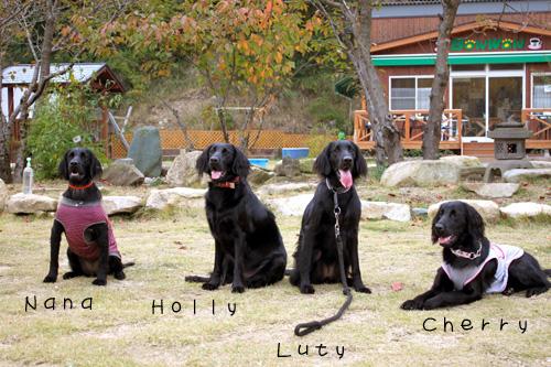 2010.11.7姉妹集合