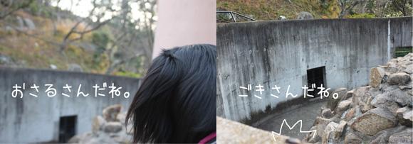 尾道2010