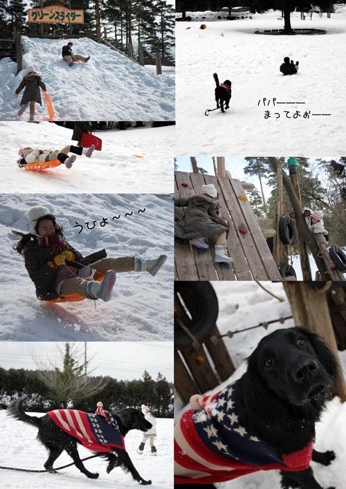 森の国2011年雪3