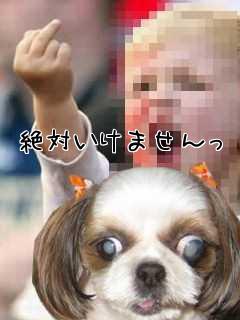 懐かすぃ~