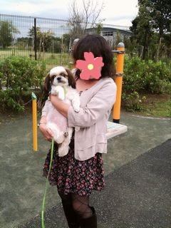 愛車コペンとシーズー犬「ガクとジャム」との日記・あきママさん...そのまんまw