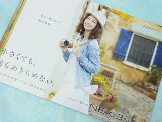 NEX-3N カタログ
