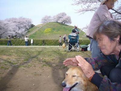 10日古墳公園2