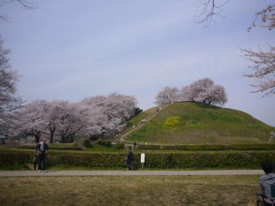 10日古墳公園7