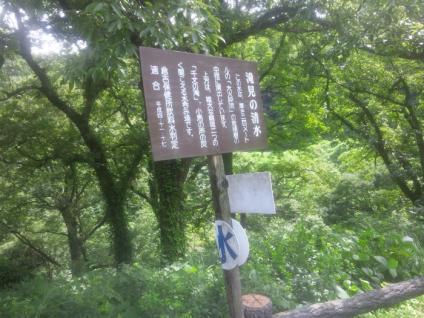 SH3I0139.jpg