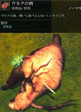 Raiderz_2013-04-09_13-30-04.jpg