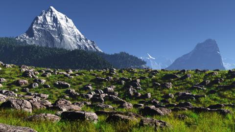 岩の多い草原