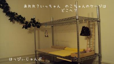 DSC05263_convert_20120415114208.jpg