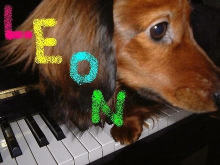 1ピアニスト レオン