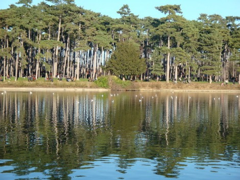 uブローニュの池_159