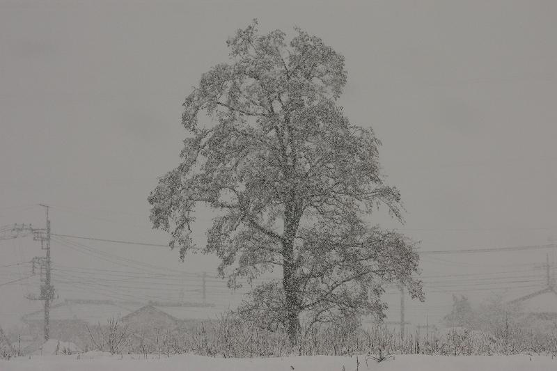 130114.jpg