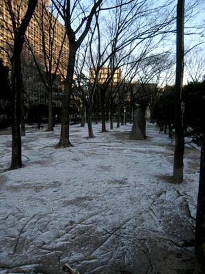 中津公園雪01