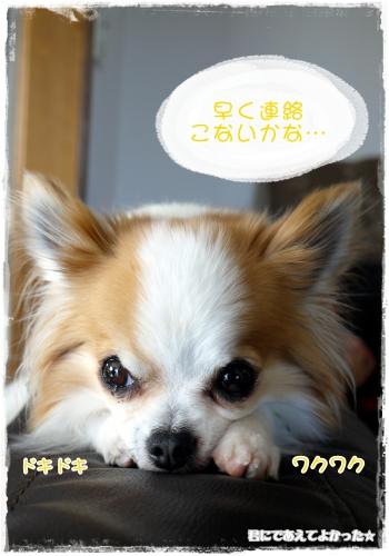 096_20120129192057.jpg