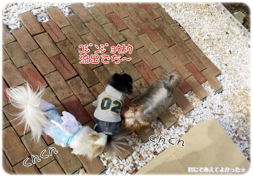 201_20120205194000.jpg