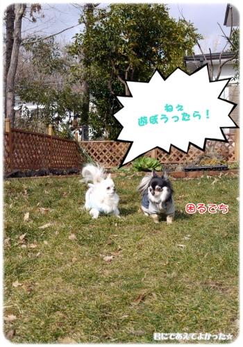 236_20120205194037.jpg