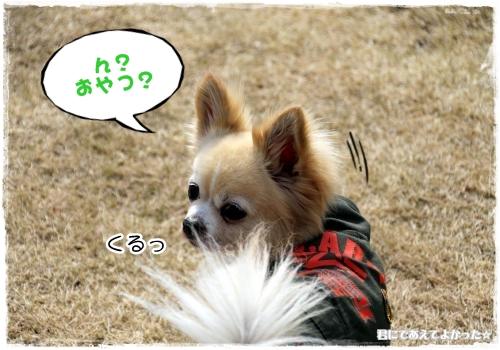 250_20120227183059.jpg