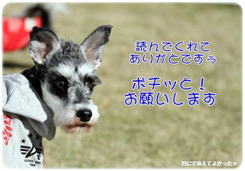 346_20111221094325.jpg