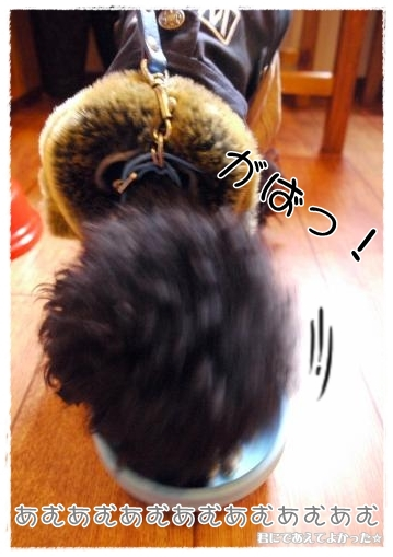 455_20120107093220.jpg