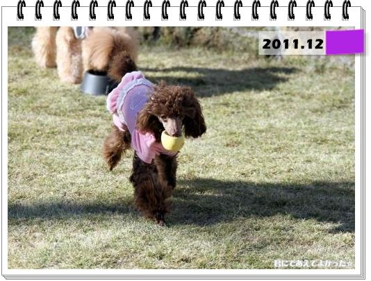 598_20120115182032.jpg