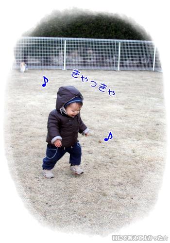 651_20120208161042.jpg