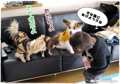 752_20120304195417.jpg