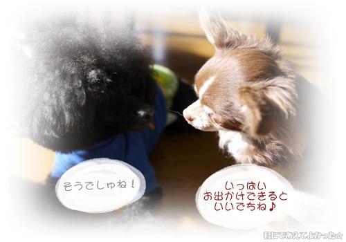 776_20120109185443.jpg