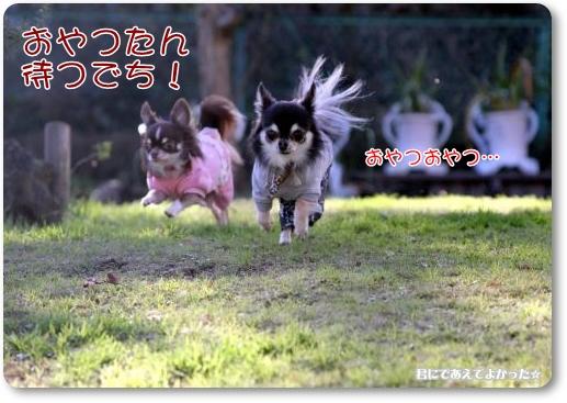 993_20111220204745.jpg