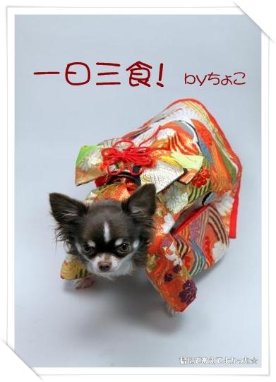 choco_20111230205838.jpg