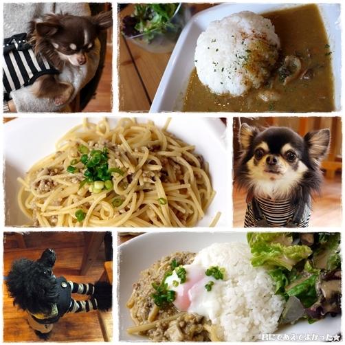 lunch_20120107093251.jpg