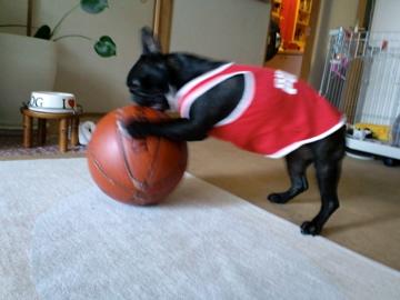 CA3Cbasketball2.jpg