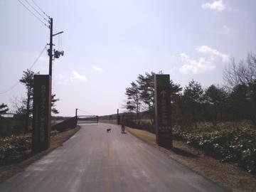 CA3Cfukushima22.jpg