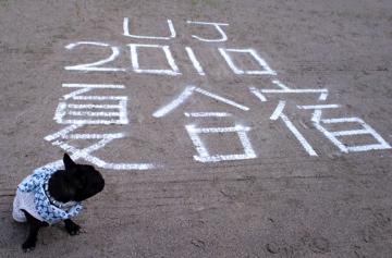 CA3Cgassyku20101.jpg