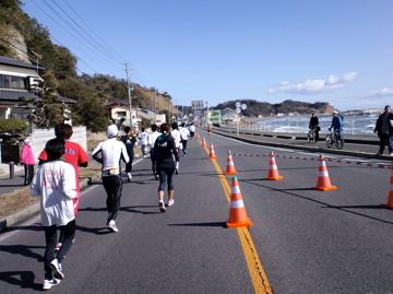 CA3Ciwaki2.jpg