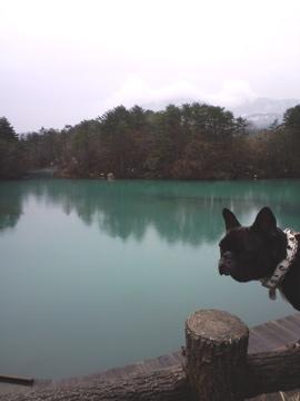 CA3Cre-fukushima1.jpg