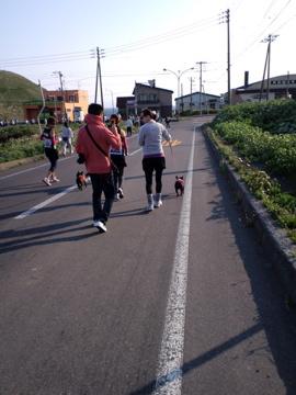 CA3Critou16.jpg
