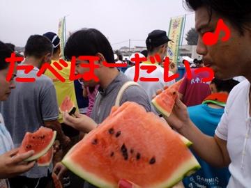 LG1my.jpg