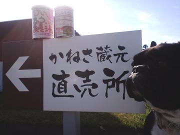 gosyogawara11.jpg
