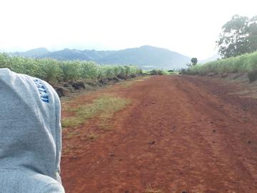 hawaii29.jpg