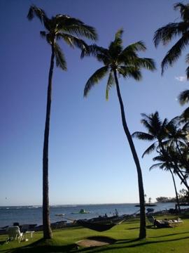 hawaii37.jpg