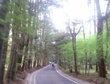 karuizawahalf2.jpg
