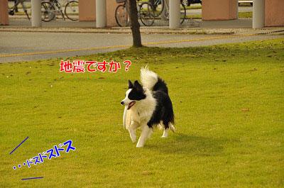 201106-max01.jpg