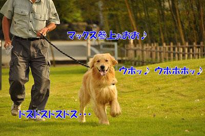 201106-max02.jpg