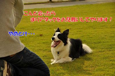 201106-max06.jpg