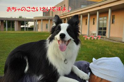 201106-onb02.jpg