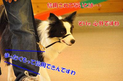 201106-tes03.jpg