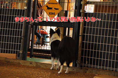 201107-atu02.jpg