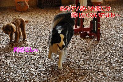 201107-atu03.jpg