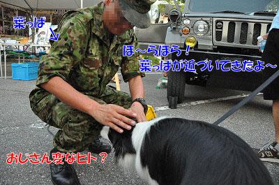 201107-han06.jpg