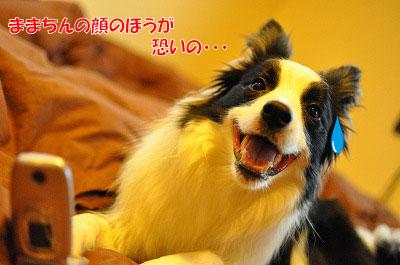 201107-kei03.jpg
